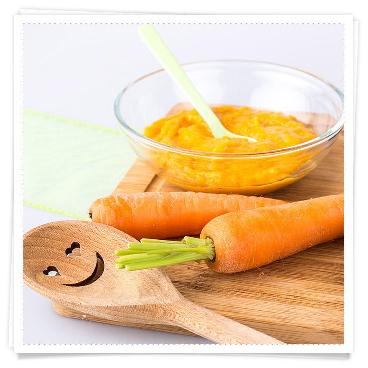 Babys 1 Jahr Rezeptideen - Gemüse-Kartoffel-Fleischbrei